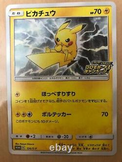 Pokemon Card Amazing Voltecker Vivid Pikachu Vmax Promo Special Art Complete set