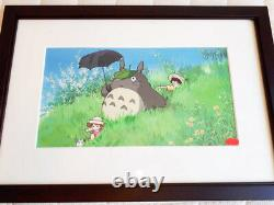 Very Rare! My neighbor Totoro Limited Official Anime Art Cel Ghibli #BC29