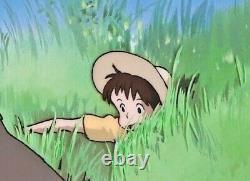 Très Rare! Mon Voisin Totoro Limitée Officiel Anime Art Cel # Bc29 Ghibli